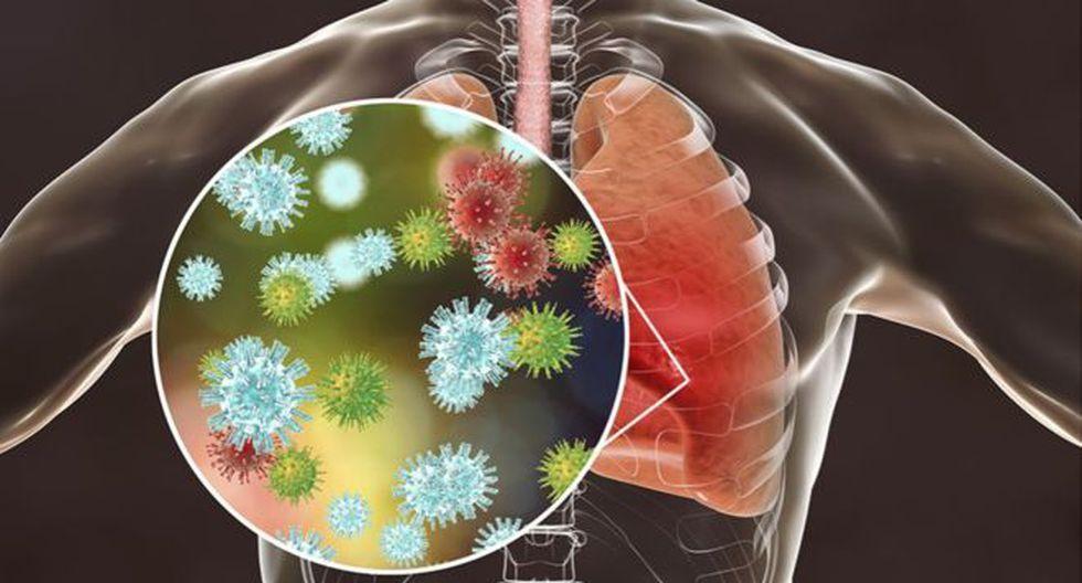 sistema inmune nurses daily